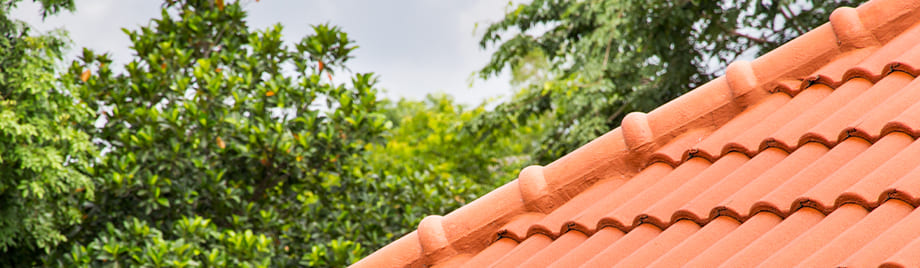 Types of Different Roofing Materials: Pros and Cons